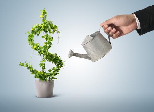 grow income