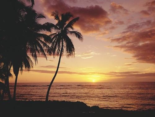 hawaii aloha state